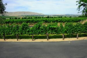 2021 INWR Wine Tour